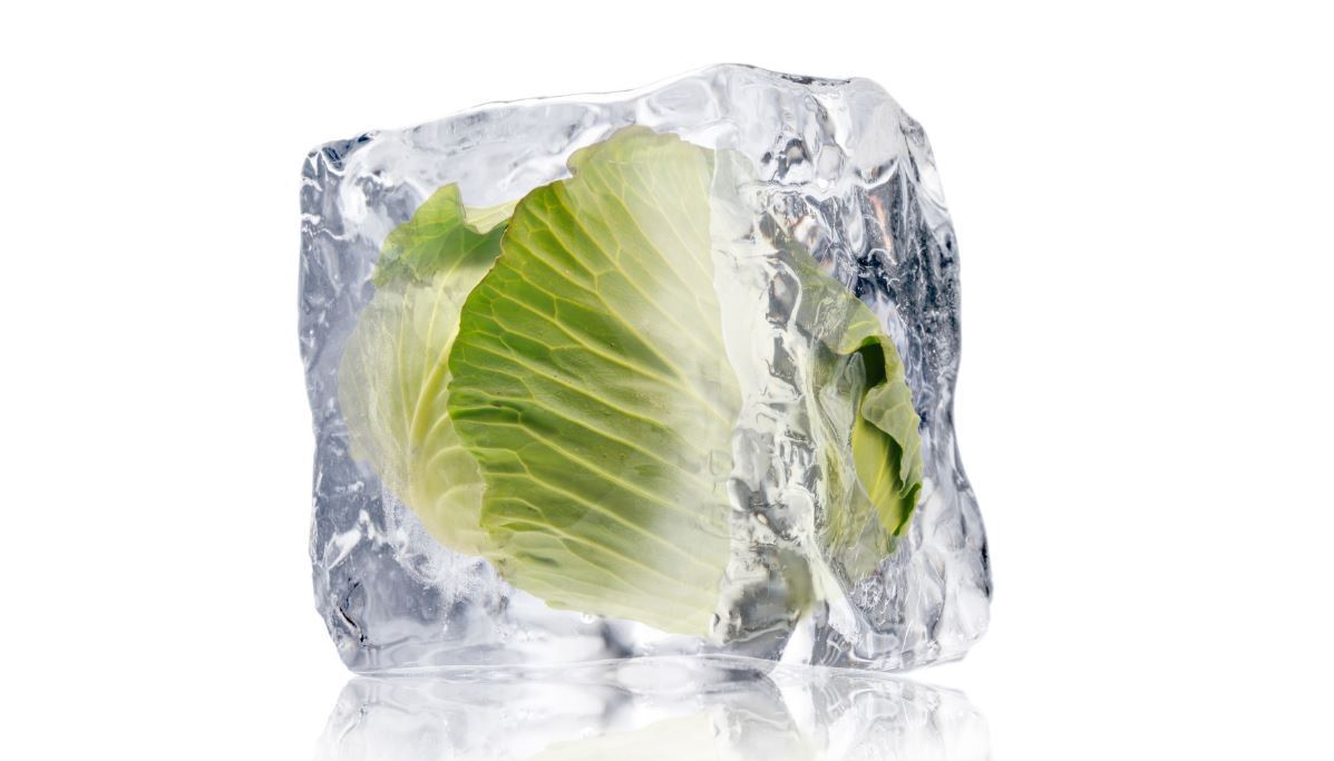 What Leafy Greens Can Be Frozen