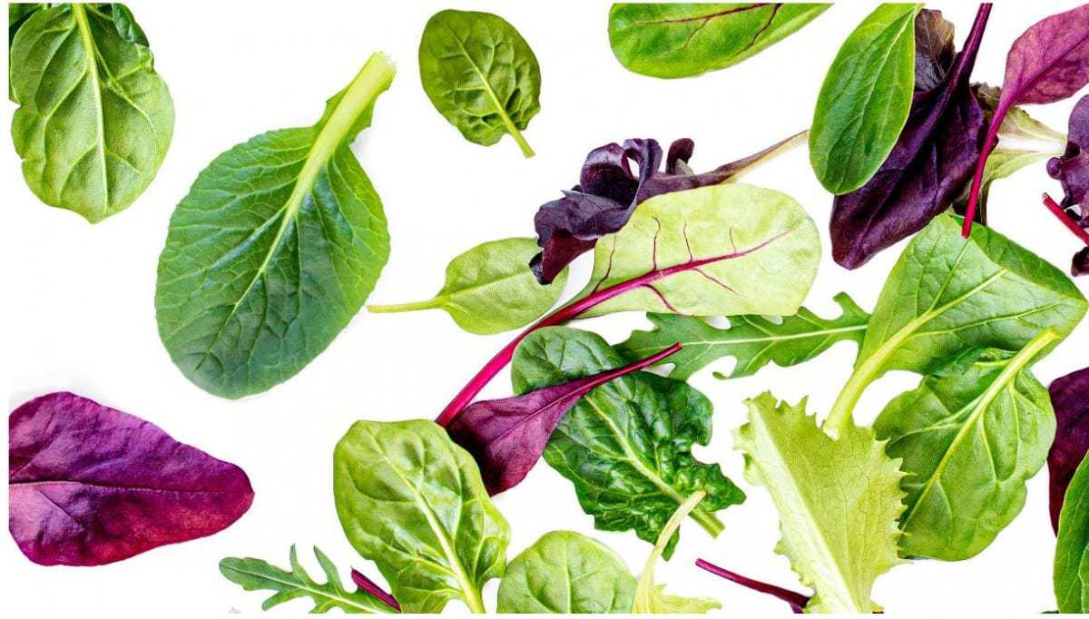 How To Incorporate Leafy Greens Into Diet