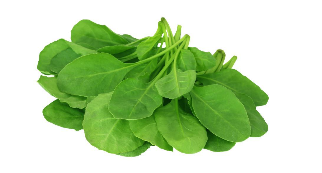 How much potassium in spinach