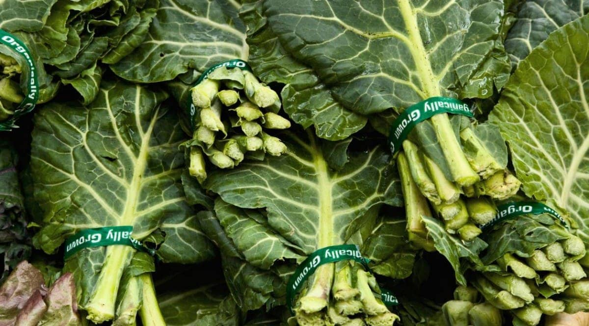 Vegetables That Contain High Levels of Insoluble Fiber