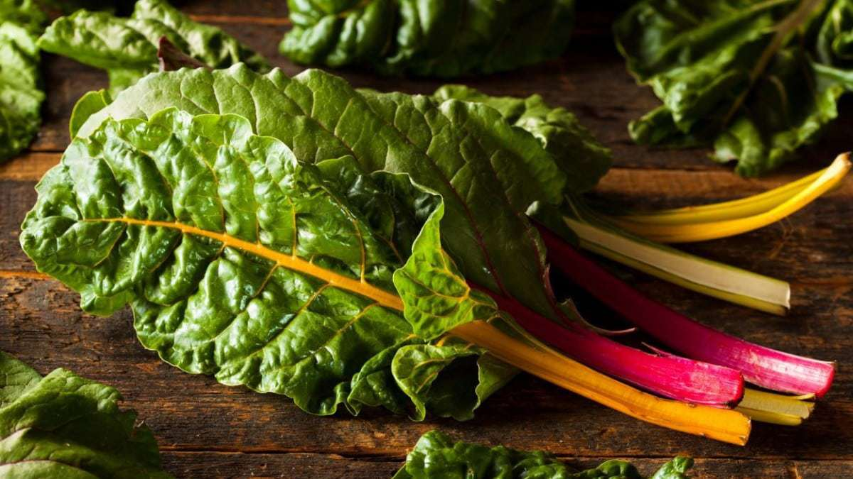 What Leafy Greens Are Low Carbs