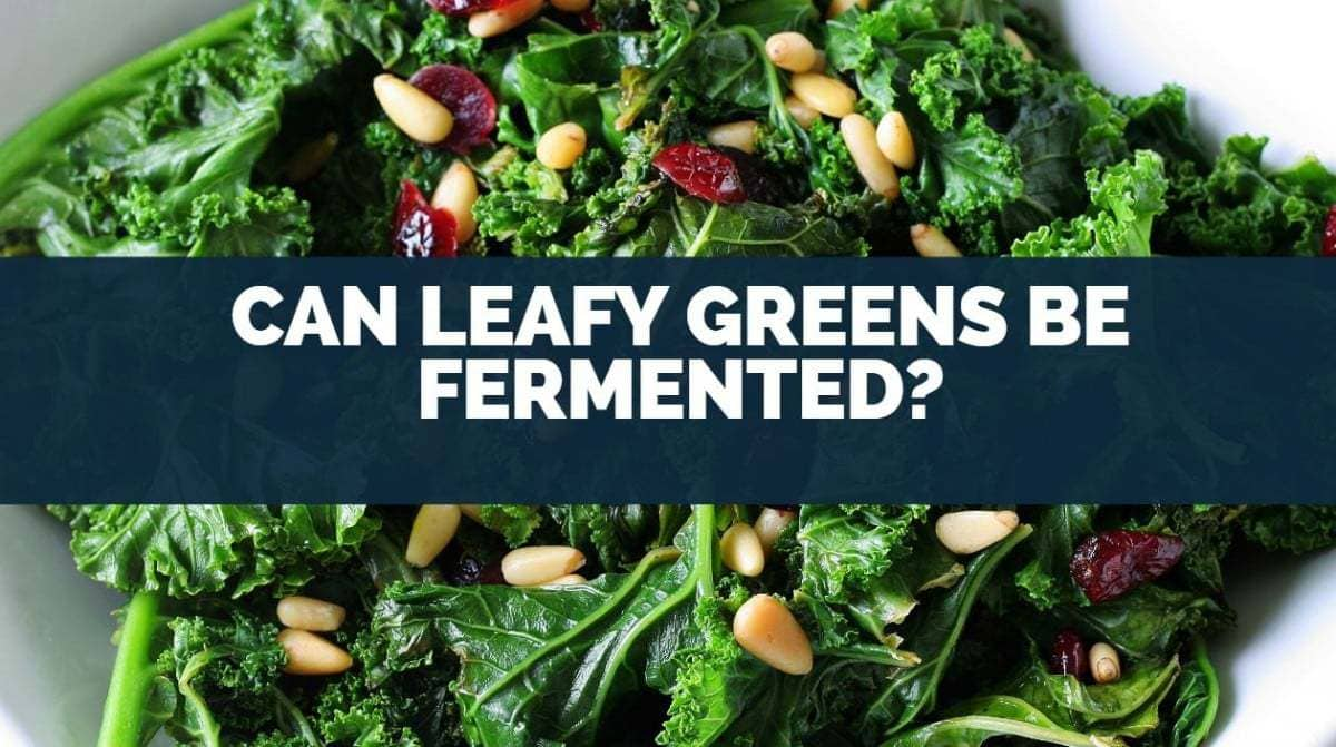 can leafy greens be fermented