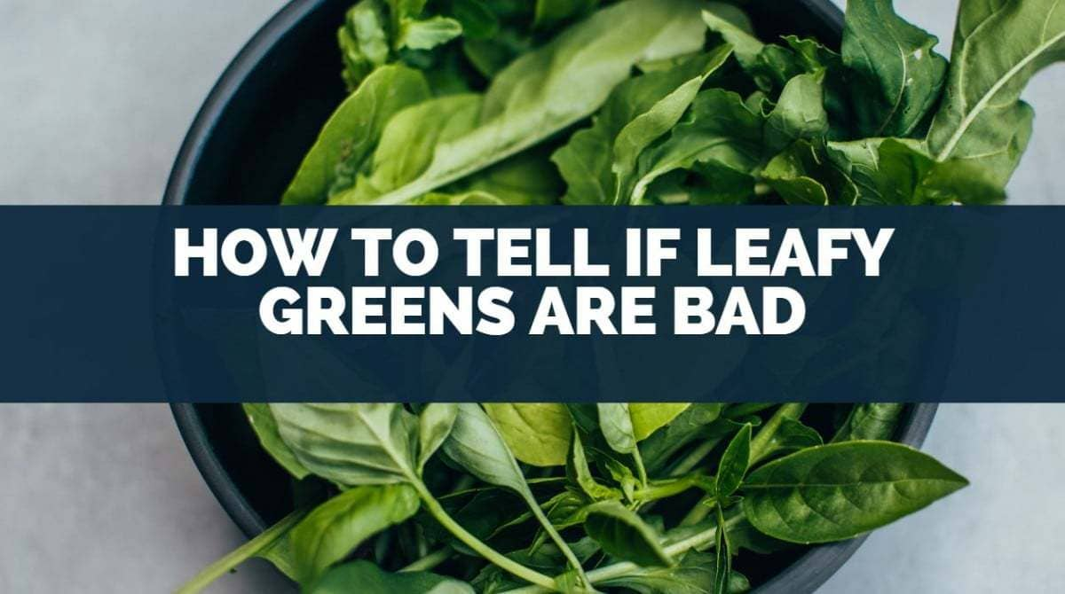 how to tell if leafy greens are bad